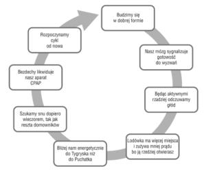 Cykl dobowy CPAP